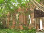 Деревья растут из под самых стен храма